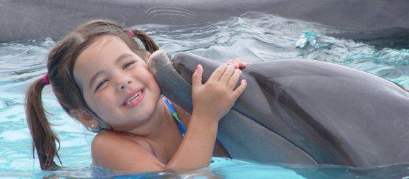 1408396918_pic_Vallarta_Adventures_Dolphin_Programs.jpg